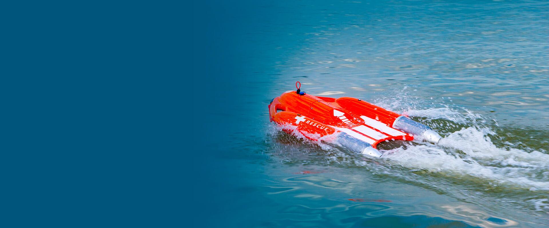 Dolphin 02 streamline img