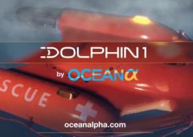 dolphin 1 thumbnail e1559794225775