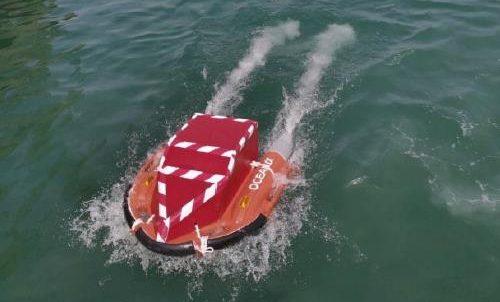 bacpac dolphin1 e1584078442565